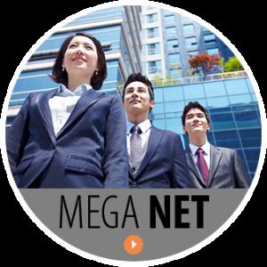 mega_net