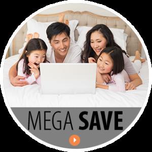 mega_save